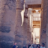 Temple of Luxor, Egypt - hall of the Lotus columns