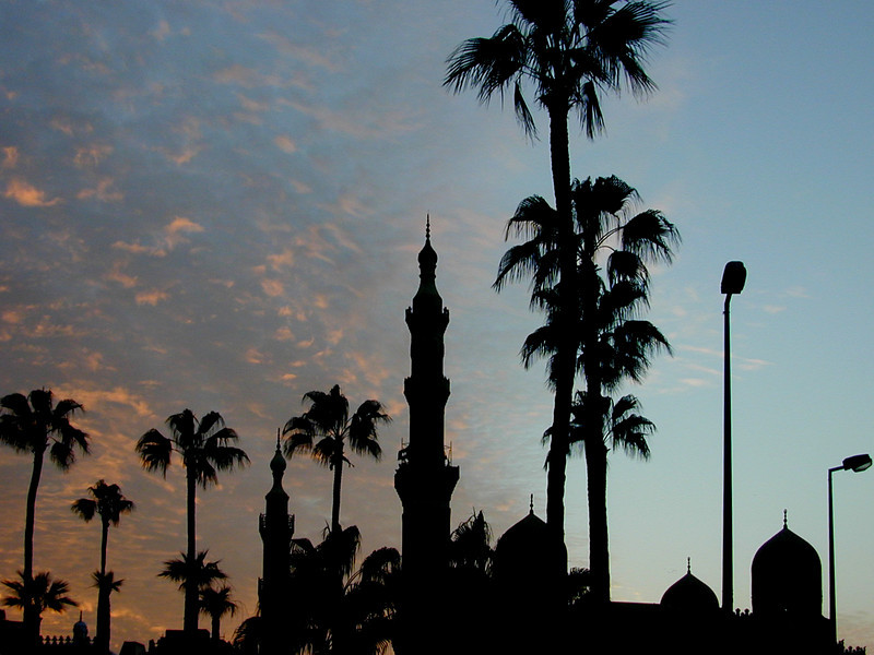 Alexandrian sunset with minarets, onion domes, date palms and streetlights.