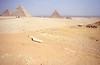 019  Drie piramides en karavaan