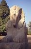 013  Openluchtmuseum Caïro - Kalkstenen Sphinx (18e dynastie)