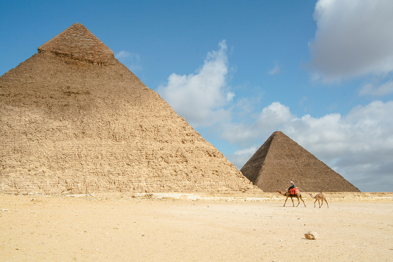 Distant View of Camels and Pyramids