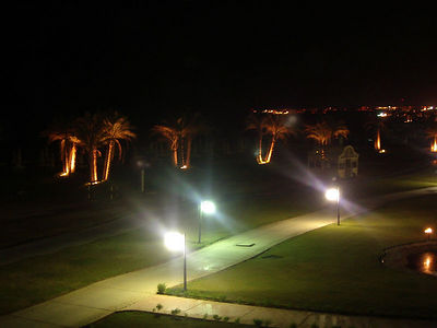View from our hotel room in Sharm El Sheik, notice the palm trees on the beach of the Red Sea.