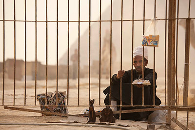 Street Peddler in Giza