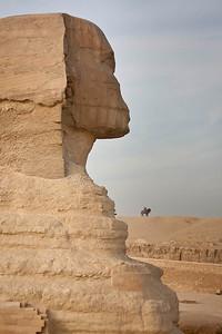 The Profile of Sphinx