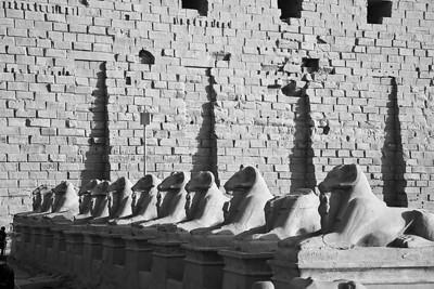 Guarding the entrence at Karnak