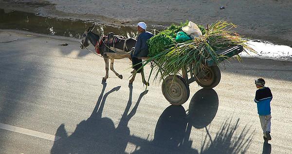 Standard mode of Transport