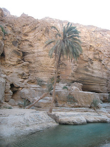 Inside Wadi Tiwi on the way to the rock pool.