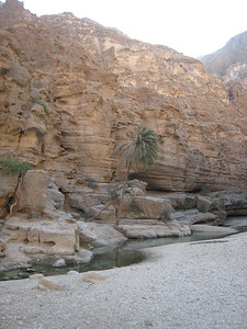 Inside Wadi Tiwi.