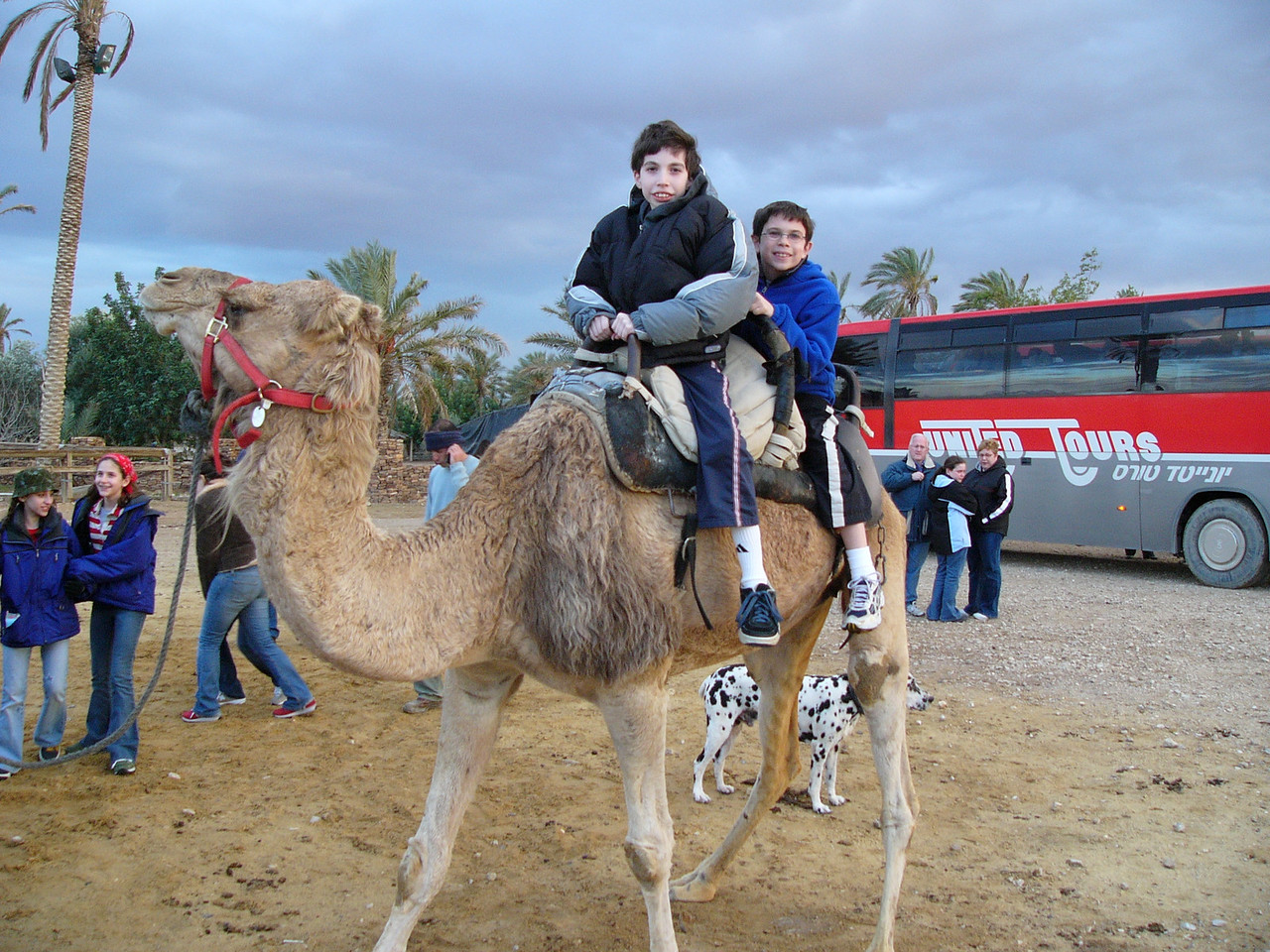 JandC on Camel