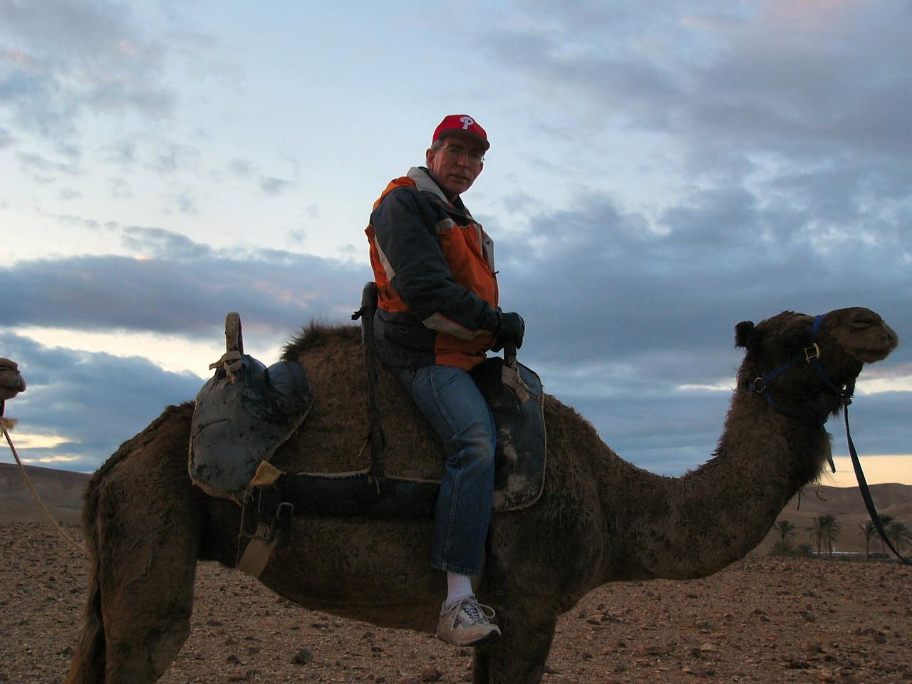 Camel w Scott