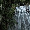 La Coca Falls cascade, El Yunque National Forest