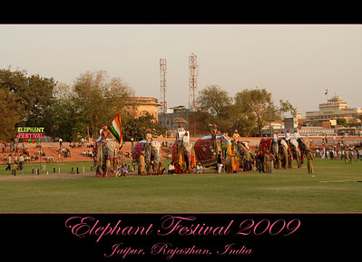 Elephant Festival 2009 being celebrated in Chaugan Stadium with the City Palace seen at the back in Jaipur on 10th Mach 2009. The elephant festival, Jaipur (Hindi: जयपुर),, is one of the most fascinating events organized in Rajasthan. This one day event coincides with Holi, the Indian festival of colors. The handlers or mahouts decorate their elephants in regal attire, and make them walk in procession at the start of the day. The procession heads to the Chaugan, the vast ground in Jaipur where this festival is hosted. The procession is watched by thousands of tourists and locals. Jaipur, Rajasthan, India. 10th March, 2009.