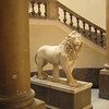 This lion is at the bottom of the stairs that run from the entrance level up to galleries on higher floors.  This museum is considered to be extremely important as it contains much of the artefacts found in the digs at Pompeii, Herculaneum, Cumae, Paestum.  There are also Egyptian and Prehistoric items of importance.