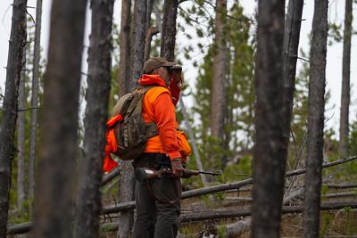Elk Camp-8602