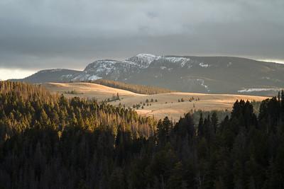 Elk Camp-8442