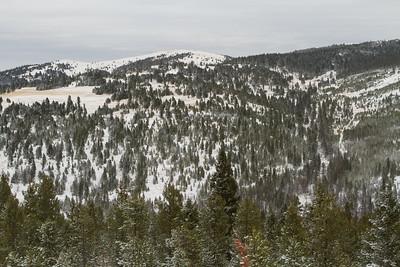 Elk Camp-8665