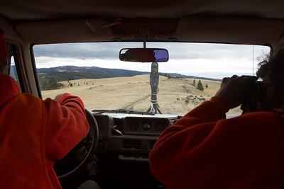 Elk Camp-8566
