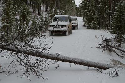 Elk Camp-8660