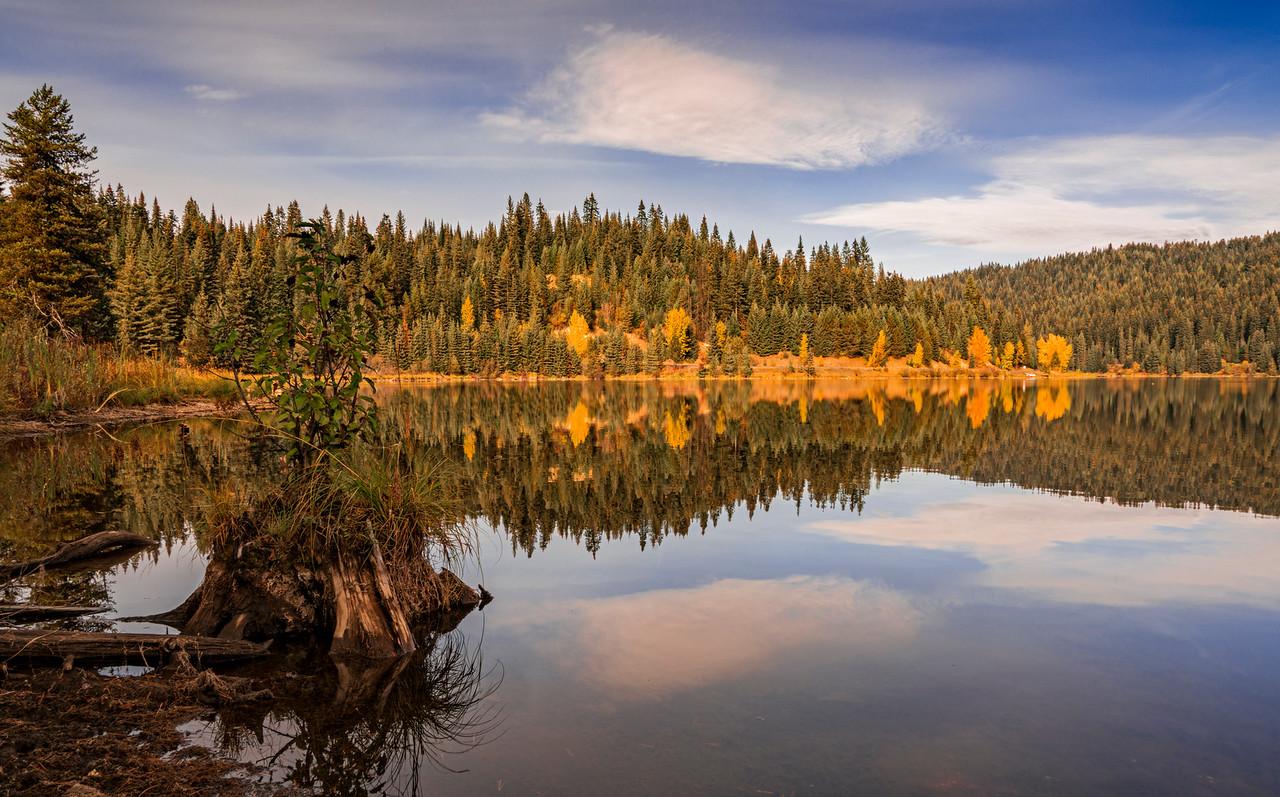fall color elk river idaho