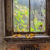 Broken windows allow leaves in from the outdoors.