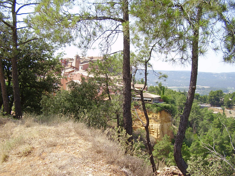 Roussillon through the pines.