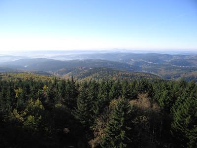 Adlersberg 850 meter