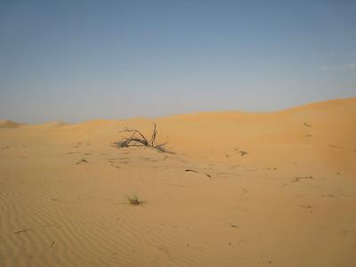 Liwa dune
