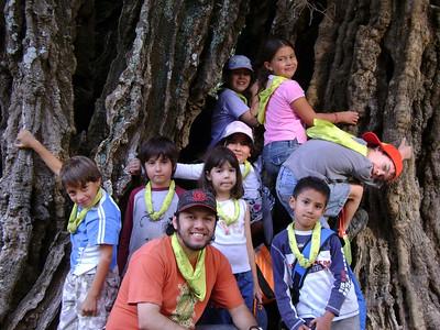 Viaje a Pátzcuaro Clase verde 2008