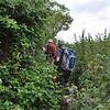 Tough slogging through the thistles, nettles, and blackberry vines.