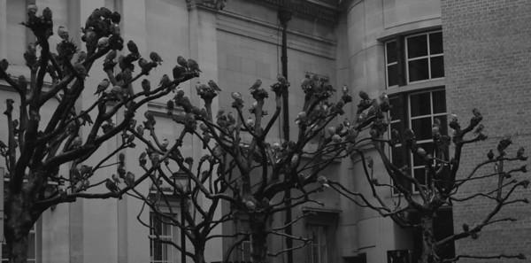 London - National Portrait Gallery