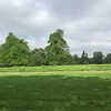 Panorama of Kensington Gardens on the way to the Royal Geographical Society, 12 May 2016. Henry Moore sculpture in distance.
