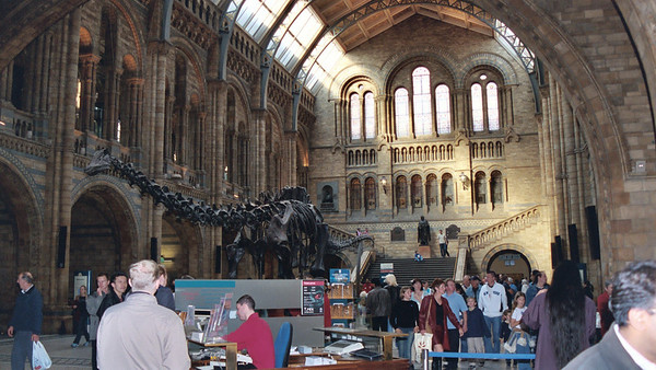 03 - The British Natural History Museum (October 18, 2003)