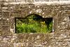 Garden window in Shaftesbury