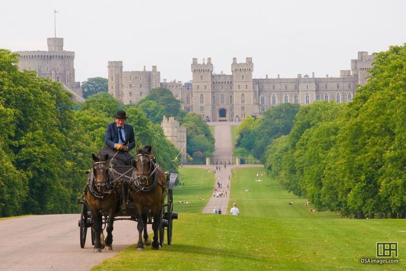 Looking down the Long Walk towards Windsor Castle