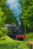 Old train passing near Newby Bridge, Lake District