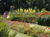 Gardens at Kew.