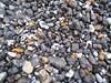 Beach pebbles, Beachy Head, 24 Apr 2005