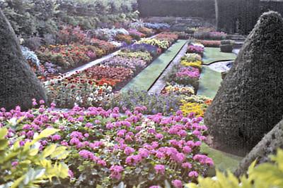 Gardens Hampton Court England - Oct 1978