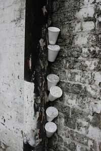 IMG_0084_Coffee Cups