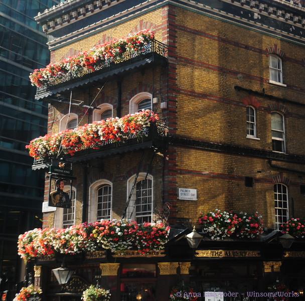 The Albert - Palmer St., Westminster