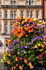 Flower display across from Windsor Castle
