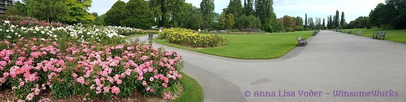 Queen Mary's Gardens Pano - Regent's Park - Camden, London