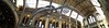 Ichthyosaurus in Natural History Museum