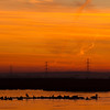 Sunrise at Oare marshes