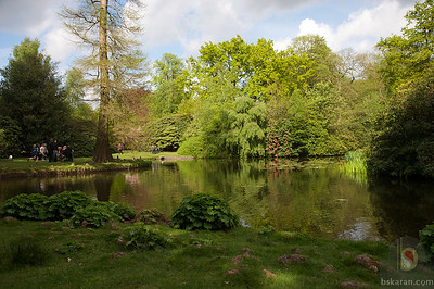 Tatton Park Gardens  : UK