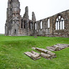 Whitby Abbey Graves