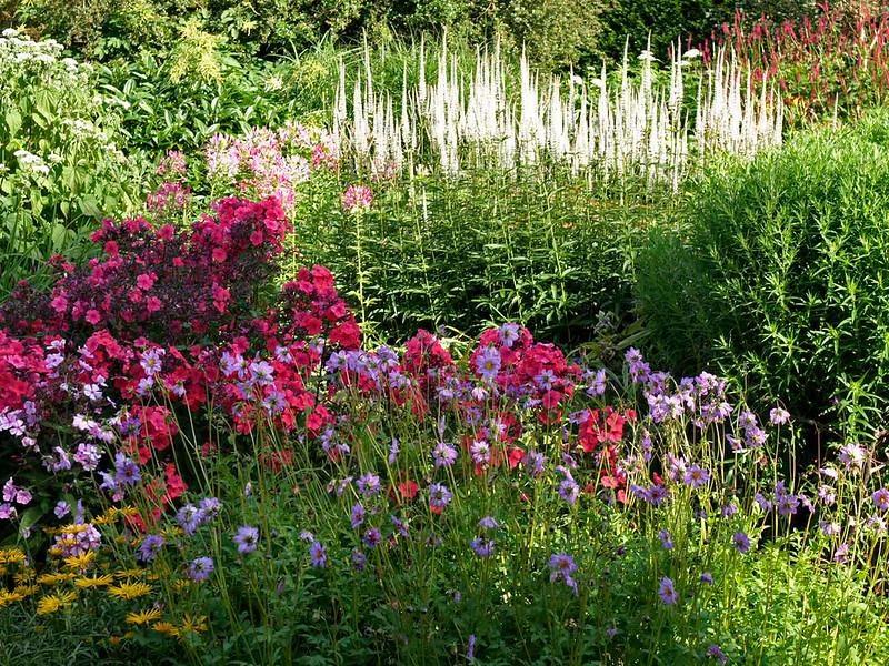 OEng Waterperry Gardens 11 copy