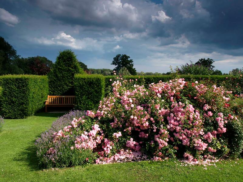 OEng Waterperry Gardens 25 copy