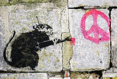 Peace rat