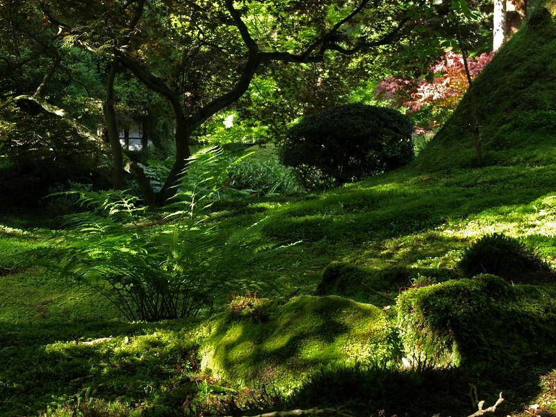 OEng Tatton Garden 39 copy